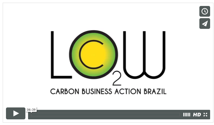 Low Carbon Brazil Action -Renewable Energies Mission.